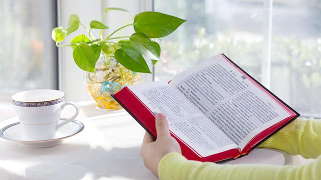 Leggere la Bibbia