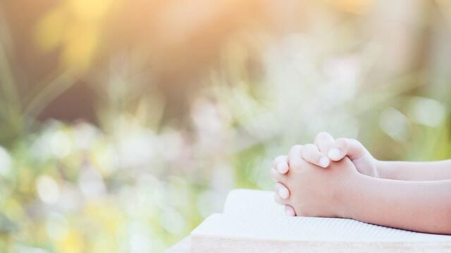 8. Lo Spirito Santo opera secondo dei principi