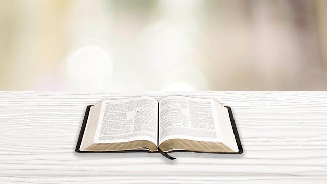 la bibbia, la parola di Dio, il pane quotidiano