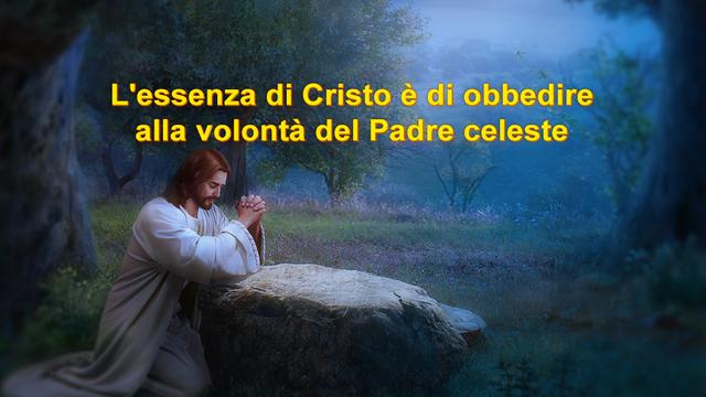 La sostanza di Cristo è l'obbedienza alla volontà del Padre celeste